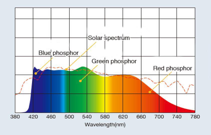 Sunlight Graph1