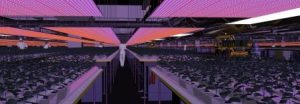 UV Company 3D image